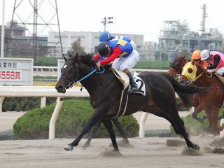 6レース岡田騎手